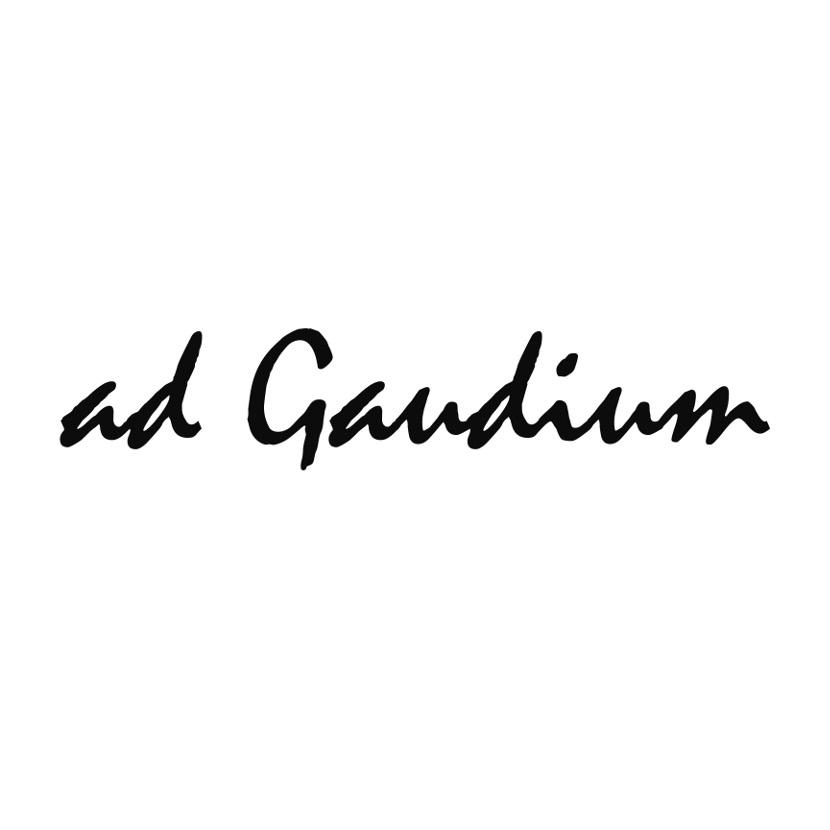 Ipack proyectos Ad Gaudium